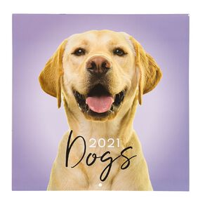 Bright Ideas 2021 Calendar Dogs 290mm X 290mm
