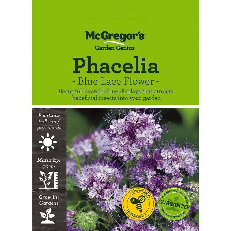 McGregor's Phacelia Blue Lace Flower Seed, , hi-res