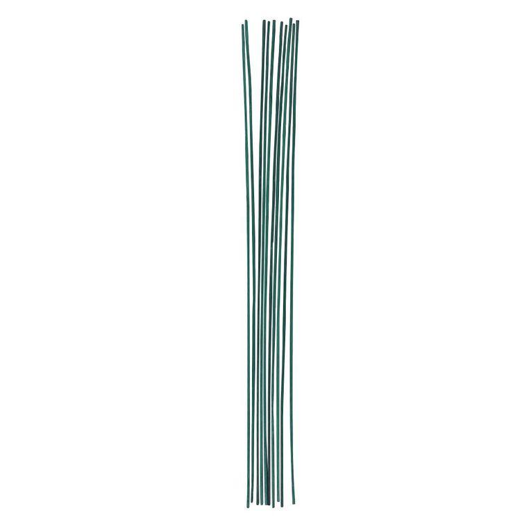 Kiwi Garden House Plant Sticks 60cm, , hi-res