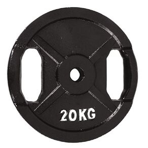 Active Intent Fitness Cast Iron Weight 20kg