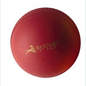 Active Intent Sports Cricket Poly Soft Ball