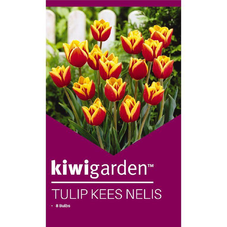 Kiwi Garden Tulip Kees Nelis 8PK, , hi-res