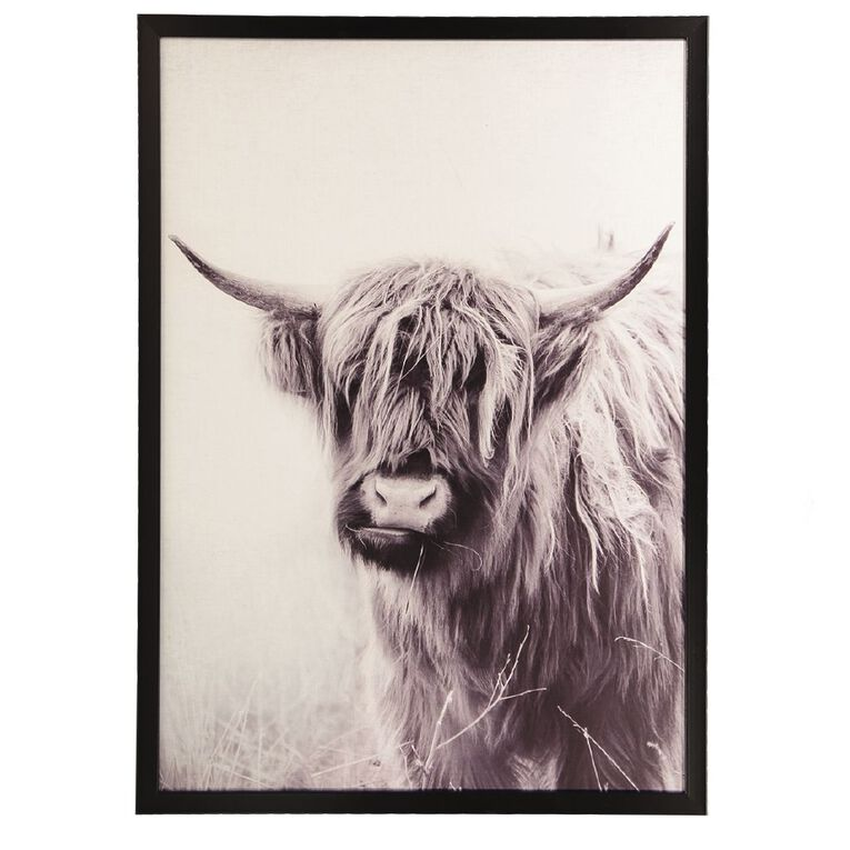 Living & Co Highland Cow Framed Print 50 x 70 x 2.3cm, , hi-res