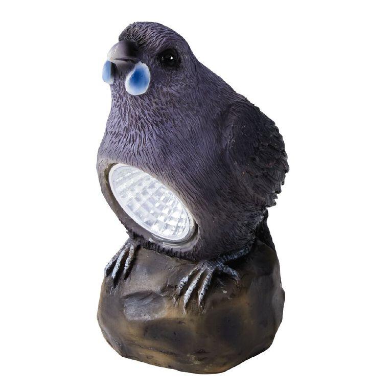 Kiwi Garden NZ Birds Solar Light Assorted, , hi-res