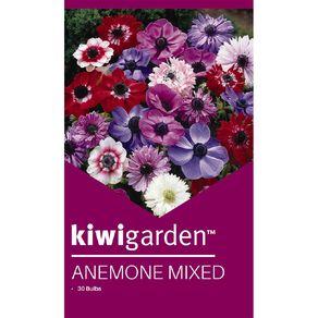 Kiwi Garden Anemone Mixed 30PK
