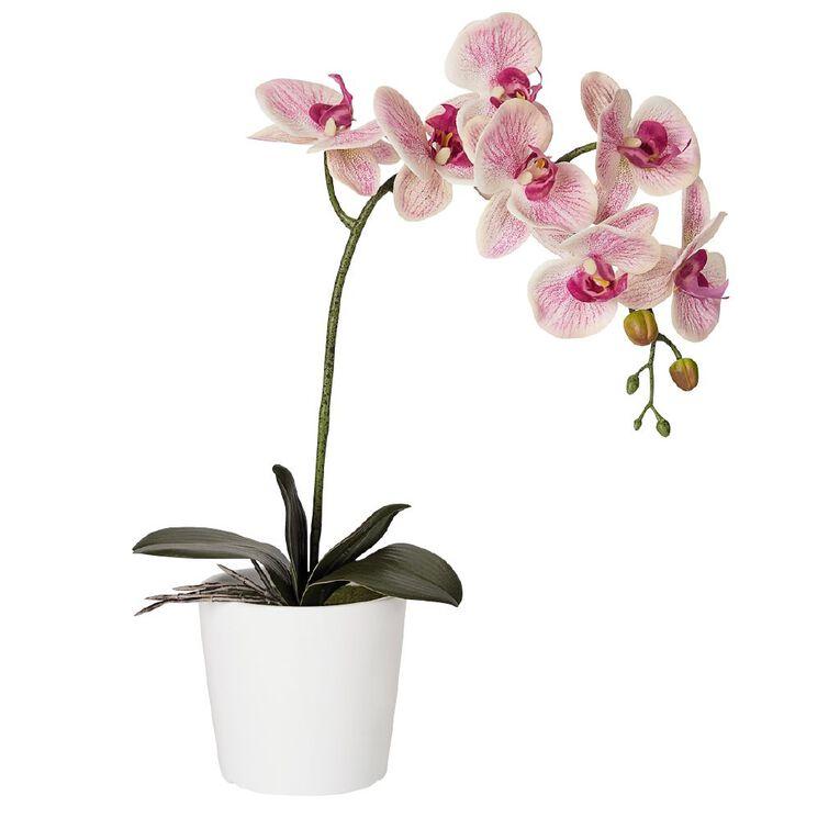 Living & Co Artificial Orchid Pink 58cm, , hi-res