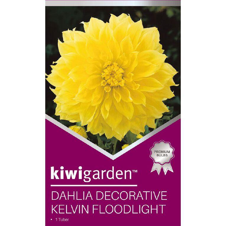 Kiwi Garden Gold Dahlia Bulb Dinner Plate assorted 1 Pack, , hi-res