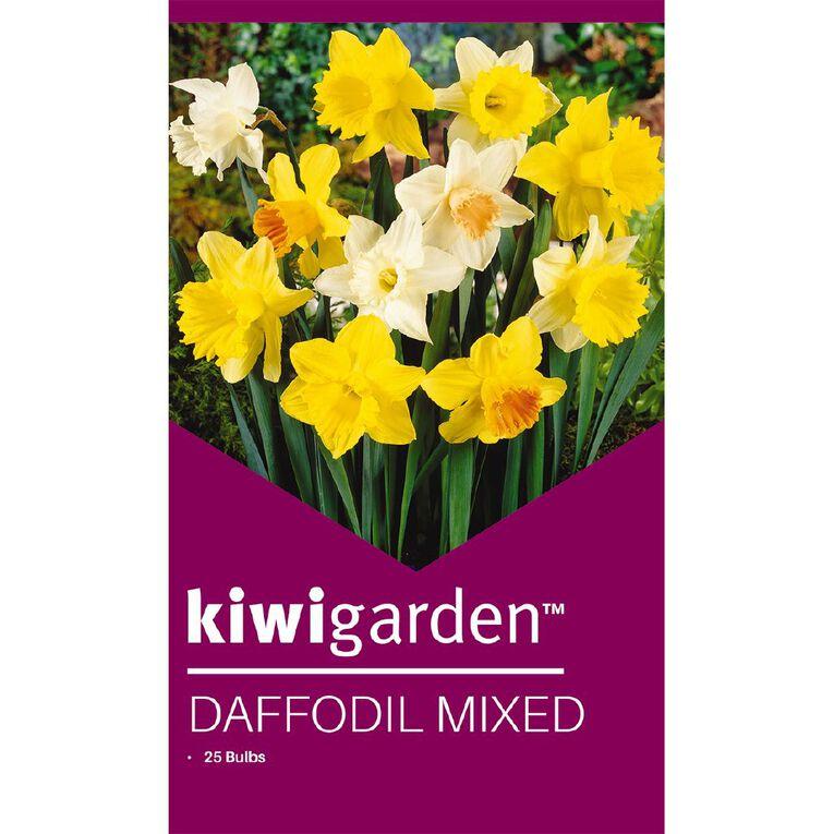 Kiwi Garden Daffodil MIxed 25PK, , hi-res