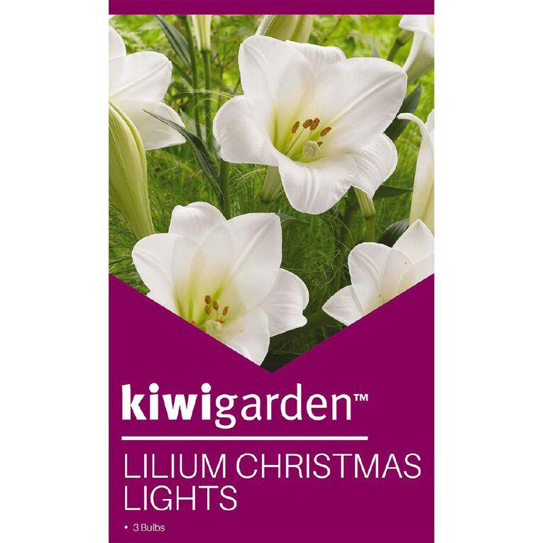 Kiwi Garden Christmas Flowering Lily Bulb 'Christmas Lights' 3PK, , hi-res