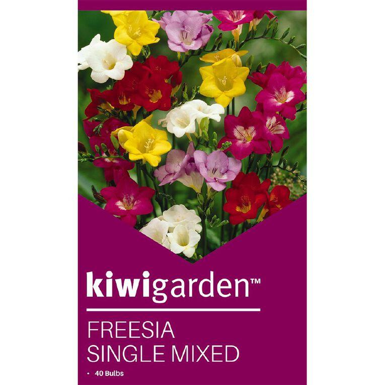 Kiwi Garden Freesia Single Mixed 40PK, , hi-res