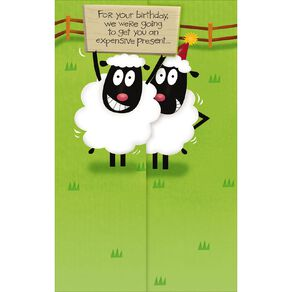 John Sands Comic Birthday Card Two Sheep