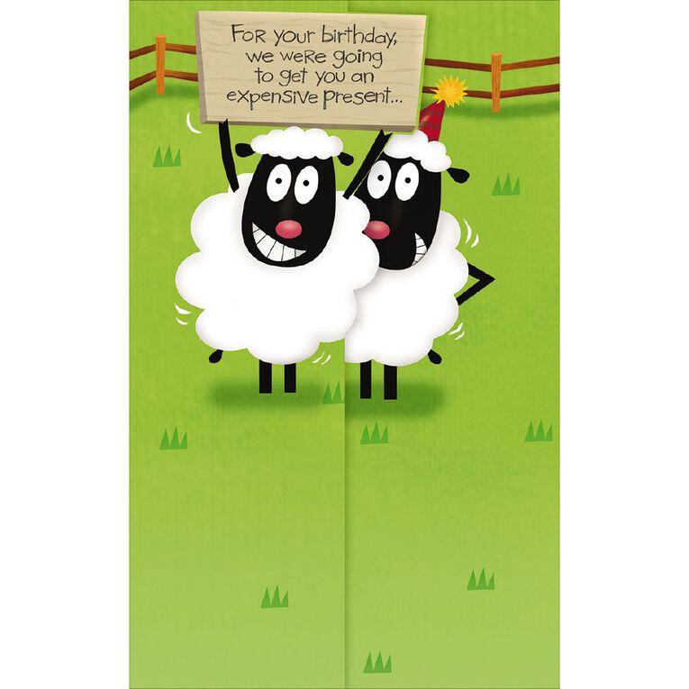 John Sands Comic Birthday Card Two Sheep, , hi-res