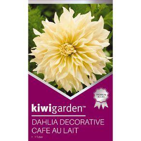 Kiwi Garden Gold Dahlia Bulb Dinner Plate assorted 1 Pack