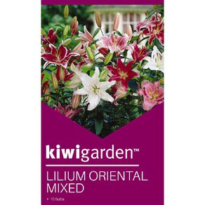 Kiwi Garden Oriental Lilium Bulb Super Mixed 10PK