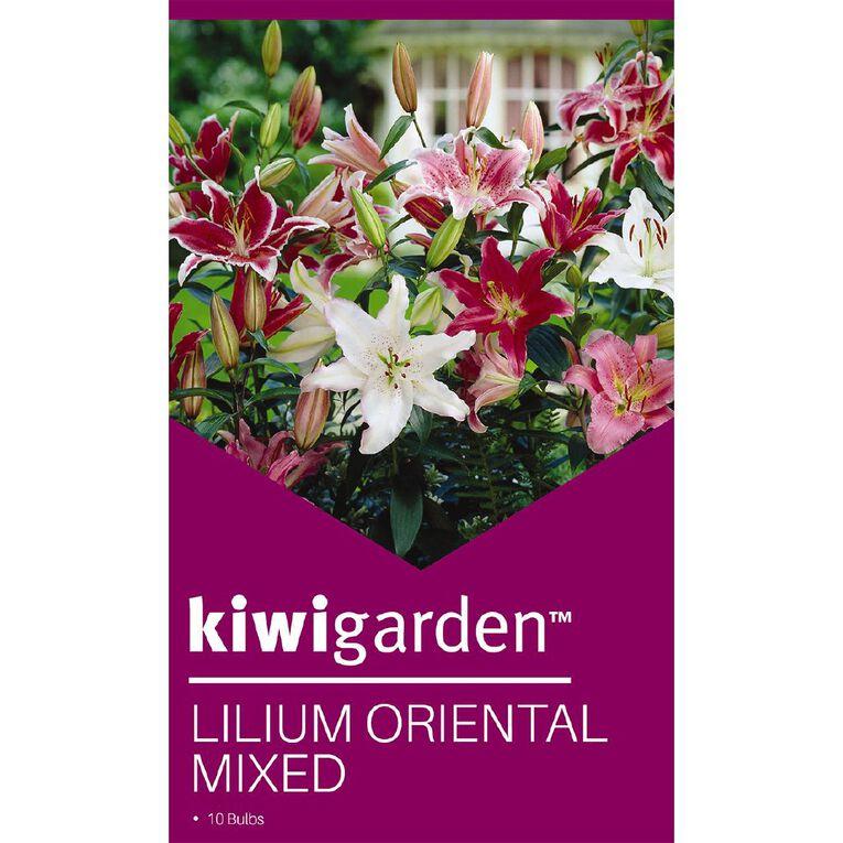 Kiwi Garden Oriental Lilium Bulb Super Mixed 10PK, , hi-res
