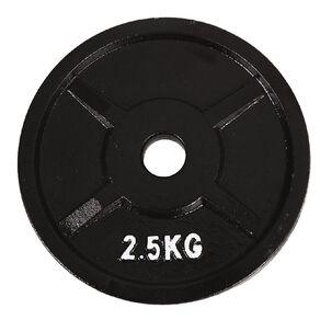Active Intent Fitness Cast Iron 2.5kg