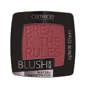 Catrice Blush Box 050