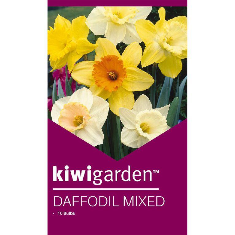 Kiwi Garden Daffodil MIxed 10PK, , hi-res