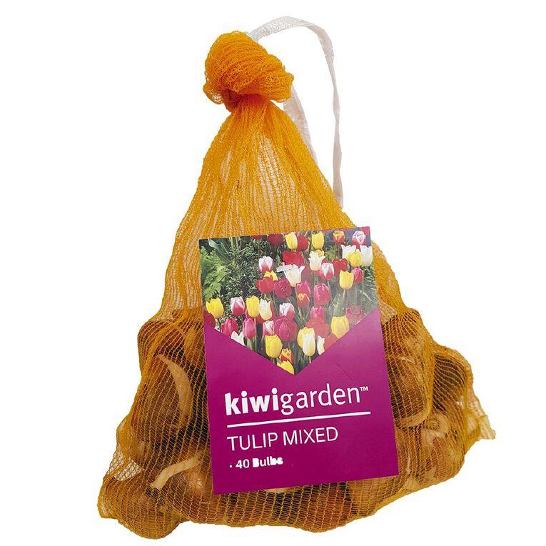 Kiwi Garden Tulip Mixed 40PK, , hi-res