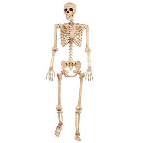 Seasons Life Size Poseable Skeleton 152cm