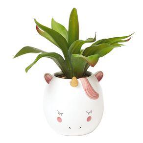 Living & Co Artificial Unicorn Succulent White