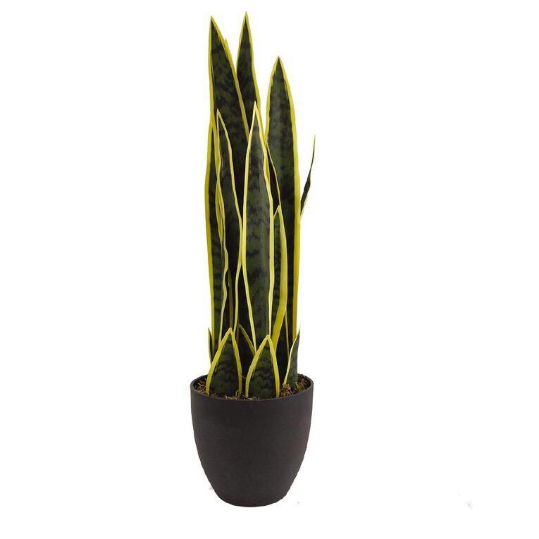 Living & Co Artificial Snake Plant 85cm Black, , hi-res