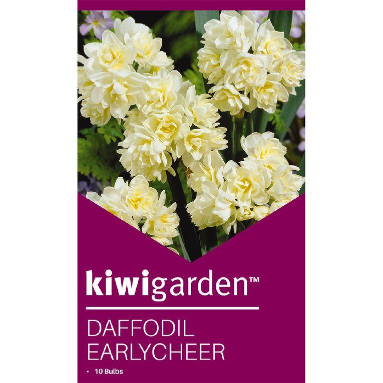 Kiwi Garden Daffodil Earlycheer 10PK, , hi-res