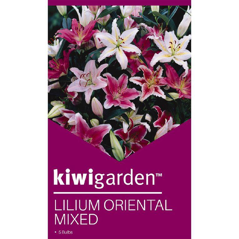 Kiwi Garden Oriental Lilium Bulb Mixed, , hi-res