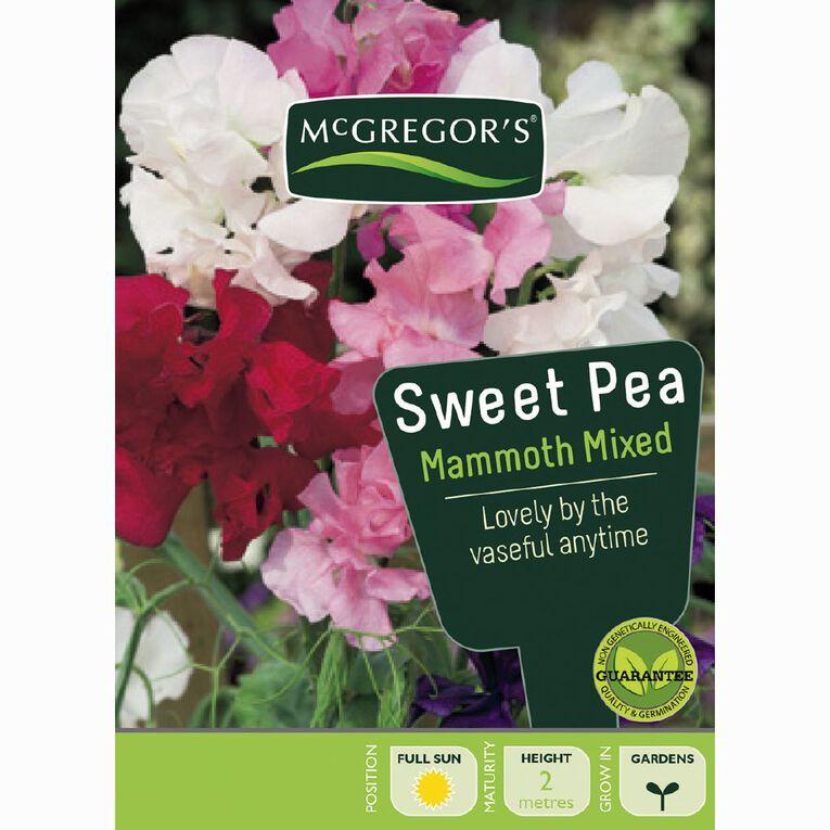 McGregor's Sweet Pea Mammoth Flower Seeds, , hi-res
