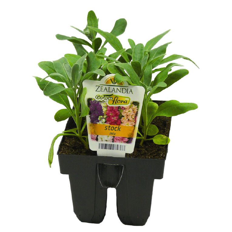 Growflora Stock Mix, , hi-res