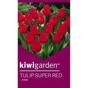 Kiwi Garden Tulip Super Red 25PK
