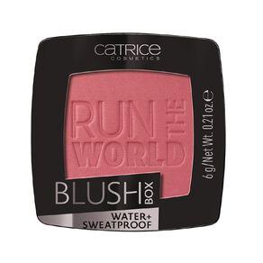 Catrice Blush Box 040