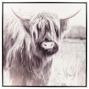 Living & Co Highland Cow In The Grass Framed Canvas Black 80cm x 80 cm