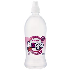 H2go Flavoured Water Berry 750ml