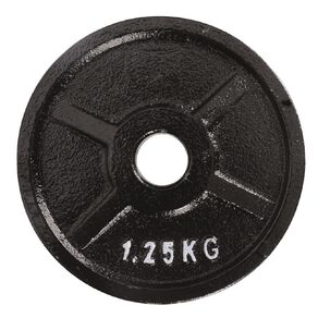 Active Intent Fitness Cast Iron Weight 1.25kg