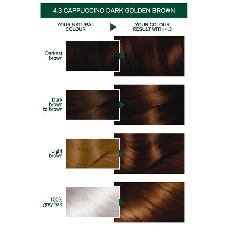Garnier Nutrisse Permanent Creme Dark Golden Brown Cappuccino 4.3, , hi-res