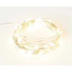 Living & Co Twinkle Light Warm White LED Silver 5m