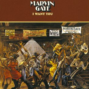 I Want You Vinyl by Marvin Gaye 1Record
