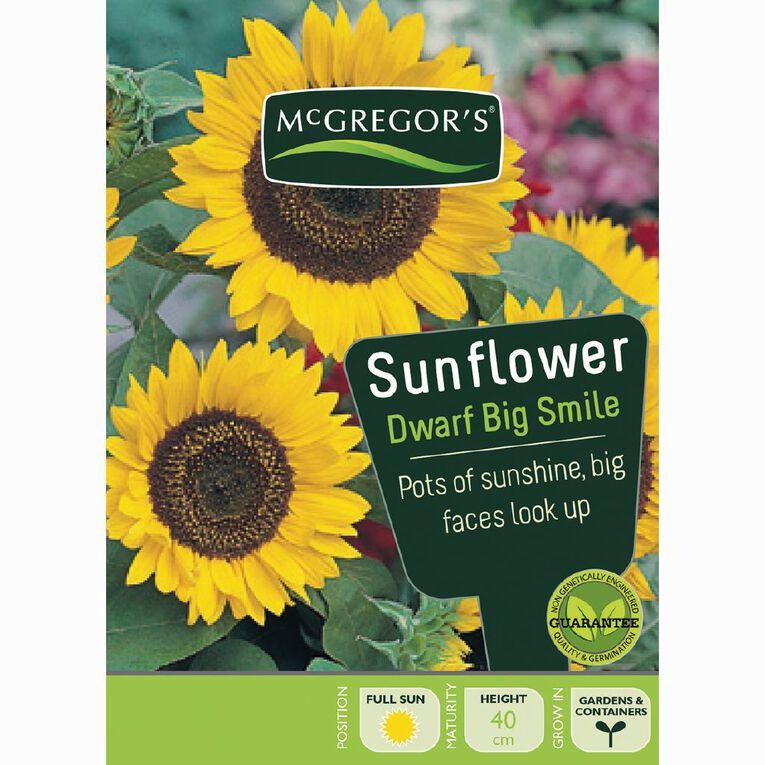 McGregor's Sunflower Big Smile Flower Seeds, , hi-res
