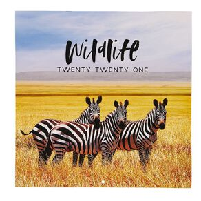Bright Ideas 2021 Calendar Wildlife 290mm X 290mm