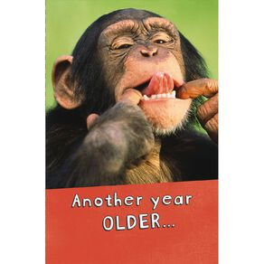 John Sands Say Cheese! Birthday Chimp