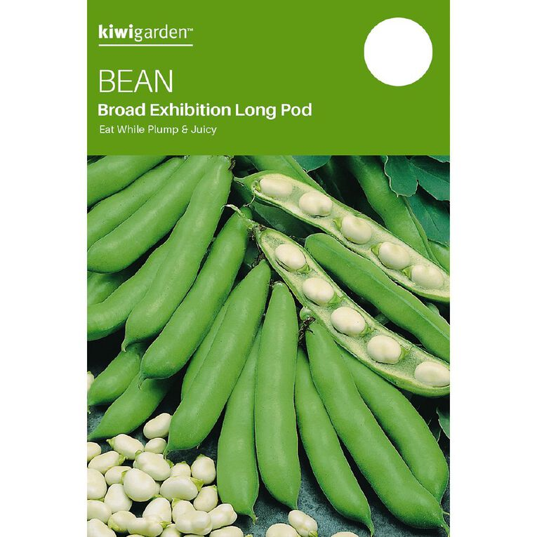 Kiwi Garden Broad Bean Exhibition Long Pod, , hi-res