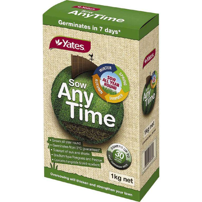 Yates Anytime Lawn Seed 1kg, , hi-res