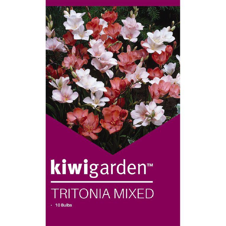Kiwi Garden Tritonia mixed 10PK, , hi-res
