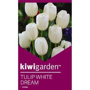 Kiwi Garden Tulip White Dream 8PK