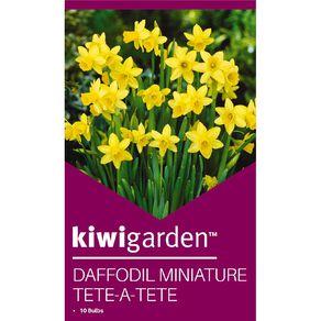 Kiwi Garden Daffodil Miniature Tete-A-Tete 10PK