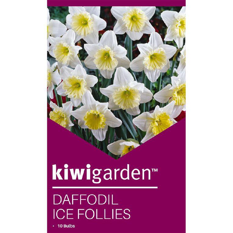 Kiwi Garden Daffodil Ice Follies 10PK, , hi-res