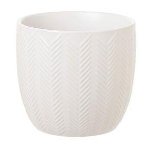 Kiwi Garden Ceramic Pot White 12cm