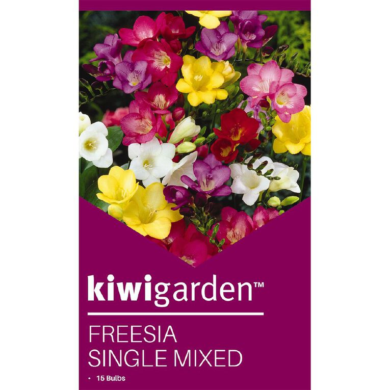 Kiwi Garden Freesia Single Mixed 15PK, , hi-res image number null
