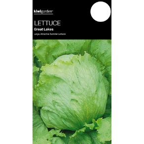 Kiwi Garden Lettuce Great Lakes
